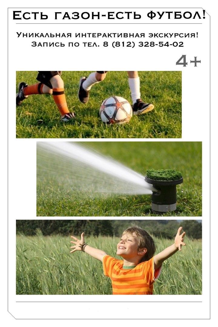 Реклама_футбольный газон