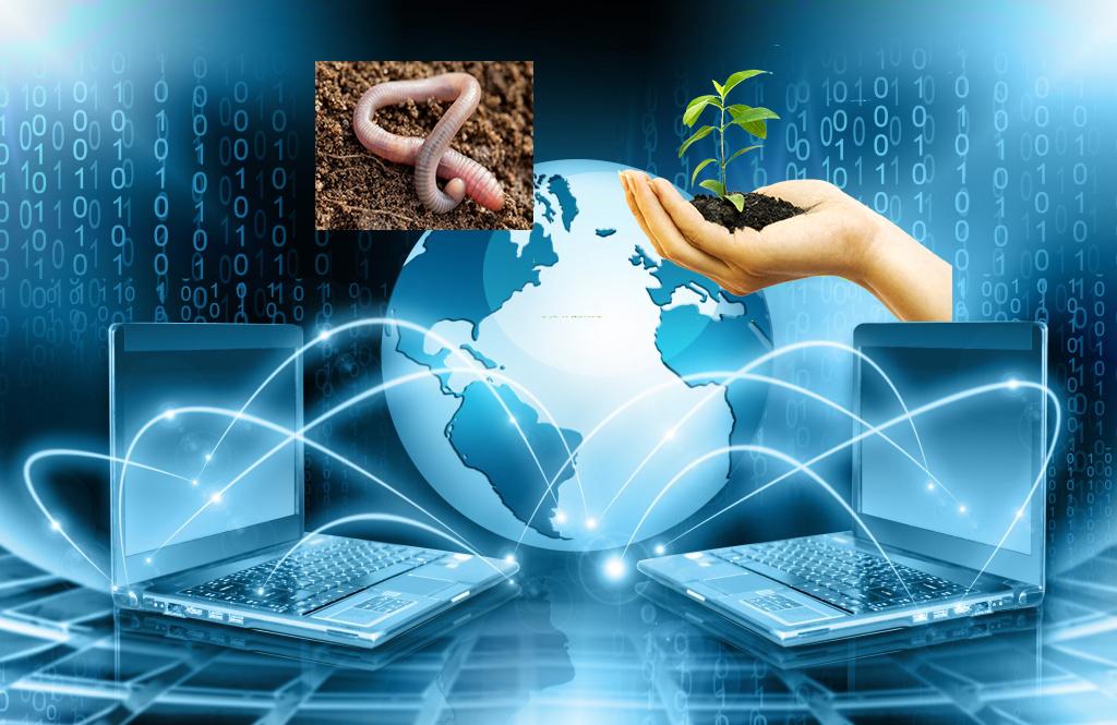 Информ и ИКТ В ПД123